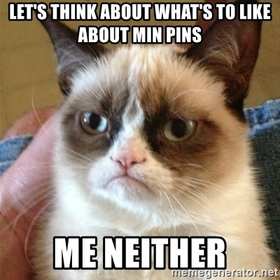 Grumpy Cat  - Let's think about what's to like about Min Pins Me Neither