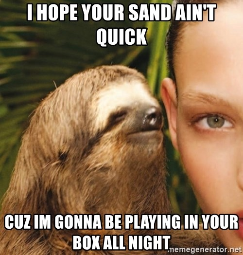 The Rape Sloth - I HOPE YOUR SAND AIN'T QUICK CUZ IM GONNA BE PLAYING IN YOUR BOX ALL NIGHT