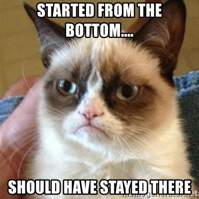 Grumpy Cat  - STARTED FROM THE BOTTOM.... SHOULD HAVE STAYED THERE