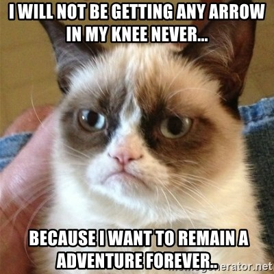 Grumpy Cat  - i will not be getting any arrow in my knee Never...  because i want to remain a adventure forever..