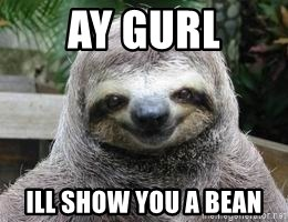 Sexual Sloth - AY GURL ill show you a bean