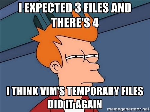 Futurama Fry - I exPECTED 3 FILES AND THERE'S 4 I THINK VIM'S TEMPORARY FILES DID IT AGAIN