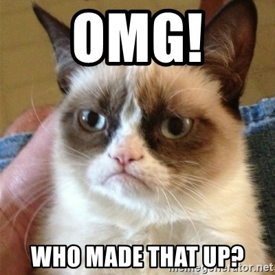 Grumpy Cat  - OMG!  Who made that up?