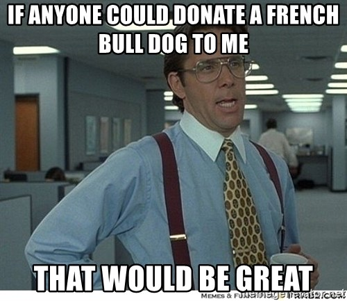 That would be great - If anyone could donate a french bull dog to me  That would be great