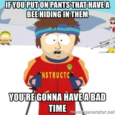 Bad time ski instructor 1 - if you put on pants that have a bee hiding in them you're gonna have a bad time