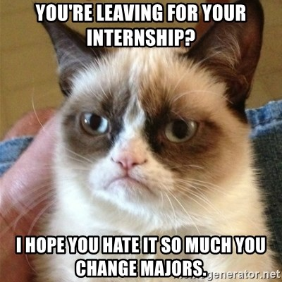 Grumpy Cat  - You're leaving for your internship? I hope you hate it so much you change majors.