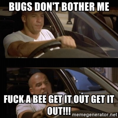Vin Diesel Car - bugs DON't bother me  fuck a bee get it out Get it OUT!!!