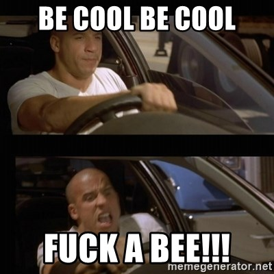 Vin Diesel Car - be cool be COOL fuck a BEE!!!