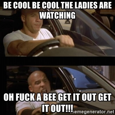 Vin Diesel Car - be cool be cool the LADIEs are watching  oh fuck a bee get it out get it OUT!!!