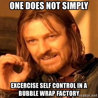 One Does Not Simply - one does not simply excercise self control in a bubble wrap factory