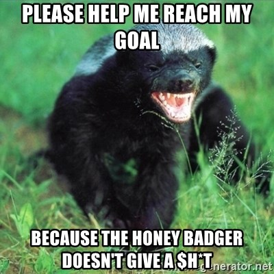 Honey Badger Actual - Please help me reach my goal because the honey badger doesn't give a $h*t