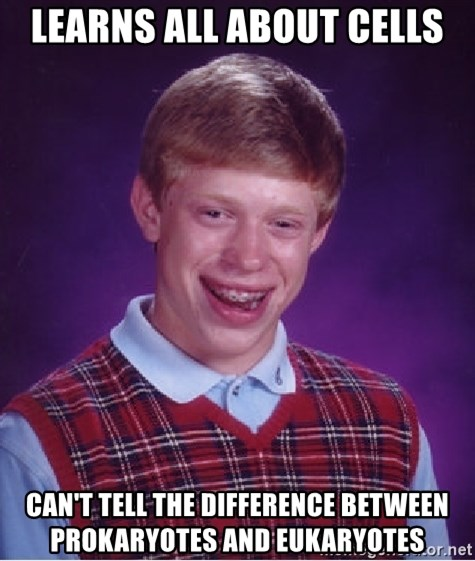 Bad Luck Brian - Learns all about cells can't tell the difference between prokaryotes and eukaryotes