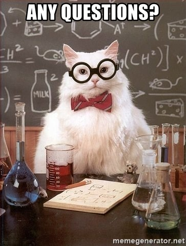 Chemistry Cat - ANY QUESTIONS?