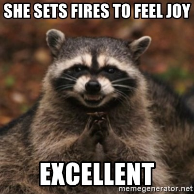 evil raccoon - SHE SETS FIRES TO FEEL JOY EXCELLENT