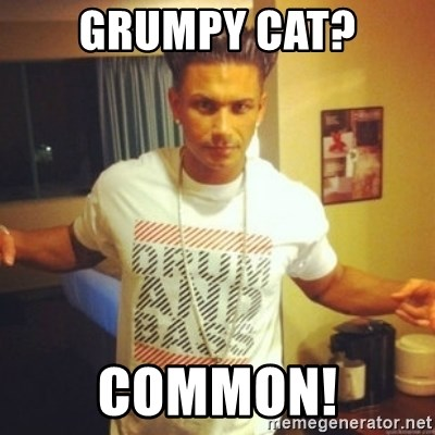 Drum And Bass Guy - GRUMPY CAT? COMMON!