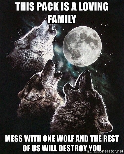 Lone Wolf Pack - this pack is a loving family mess with one wolf and the rest of us will destroy you