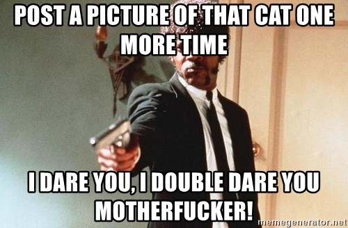 I double dare you - post a picture of that cat one more time I dare you, I double dare you motherfucker!