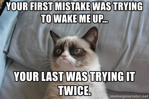 Grumpy cat good - Your First mistake was trying to wake me up... Your last was trying it twice.