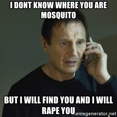 I don't know who you are... - I dont know where you are mosquito but i will find you and i will rape you