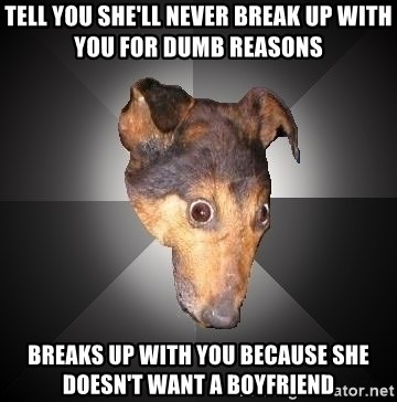 Depression Dog - Tell you she'll never break up with you for dumb reasons breaks up with you because she doesn't want a boyfriend