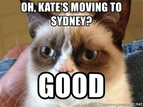 Angry Cat Meme - oh, kate's moving to sydney? Good