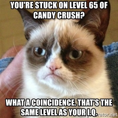 Grumpy Cat  - You're stuck on level 65 of candy crush? What a coincidence. That's the same level as your i.q.