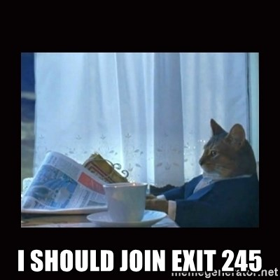 i should buy a boat cat -  I should join exit 245