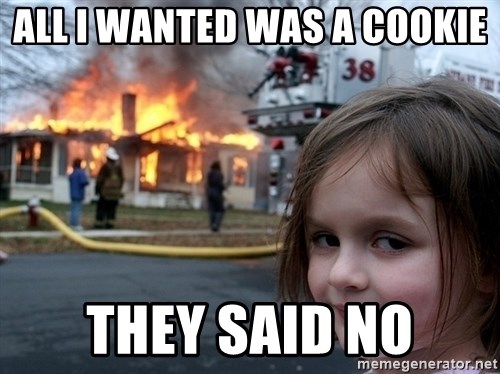 Disaster Girl - All I wanted was a cookie they said no