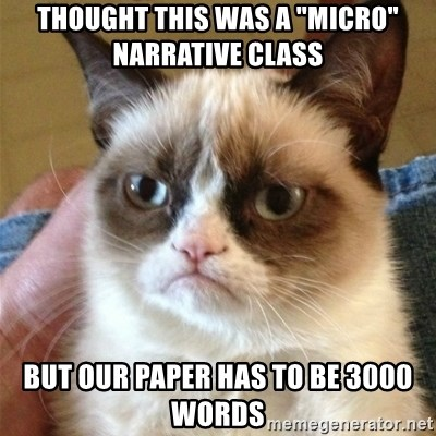 """Grumpy Cat  - thought this was a """"Micro"""" Narrative Class But our paper has to be 3000 words"""