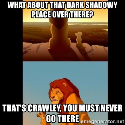 Lion King Shadowy Place - What about that dark shadowy place over there? That's crawley, you must never go there