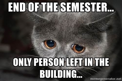 Sadcat - End of the semester... Only person left in the building...
