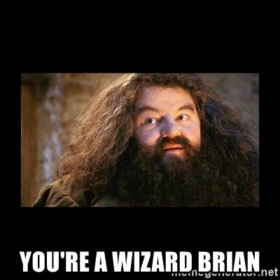 You're a Wizard Harry -  You're a wizard brian