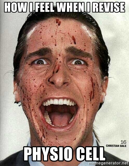 american psycho - how i feel when i revise  physio cell