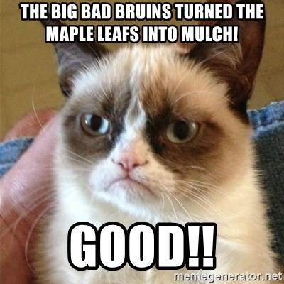 Grumpy Cat  - The Big bad bruins turned the maple leafs into mulch! GOOD!!