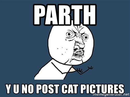 Y U No - Parth Y U NO post cat pictures