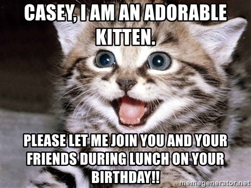 HAPPY KITTEN - Casey, I am an adorable kitten. Please let me join you and your friends during lunch on your birthday!!