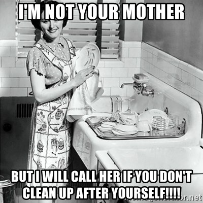 50s Housewife - I'm not your Mother but i will call her if you don't clean up after yourself!!!!