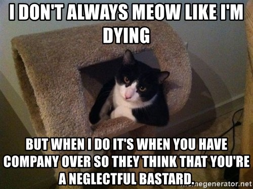 cool cat - I DON'T ALWAYS MEOW LIKE I'M DYING BUT WHEN I DO IT'S WHEN YOU HAVE COMPANY OVER SO THEY THINK THAT YOU'RE A NEGLECTFUL BASTARD.