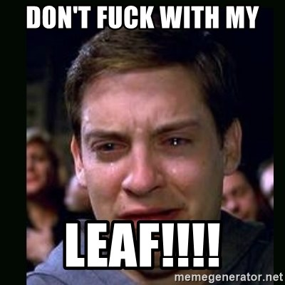 crying peter parker - DON'T FUCK WITH MY  LEAF!!!!