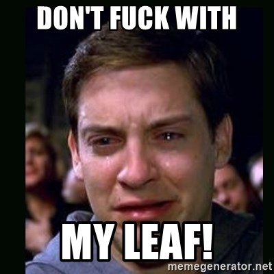 crying peter parker - DON'T FUCK WITH MY LEAF!