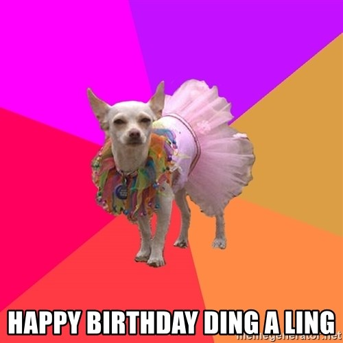Ballet Chihuahua -  Happy birthday ding a ling