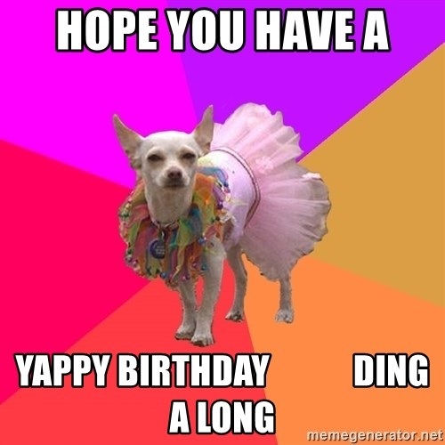 Ballet Chihuahua - Hope you have a  Yappy birthday            ding a long