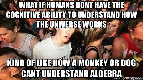 -Sudden Clarity Clarence - What if humans dont have the cognitive ability to understand how the universe works  Kind of like how a monkey or dog cant understand algebra