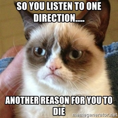 Grumpy Cat  - So you listen to one Direction..... another reason for you to die