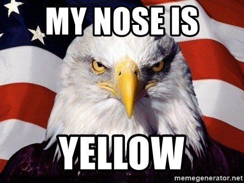 American Pride Eagle - MY NOSE IS  YELLOW