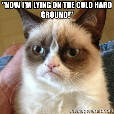 "Grumpy Cat  - ""NOW I'M LYING ON THE COLD HARD GROUND!"""