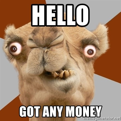 Crazy Camel lol - HELLO GOT ANY MONEY