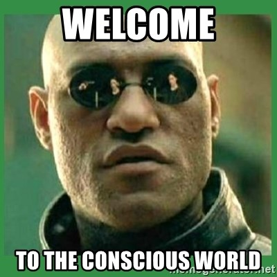 Matrix Morpheus - welcome to the conscious world
