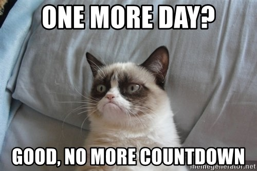 Grumpy cat good - One more day? Good, no more countdown