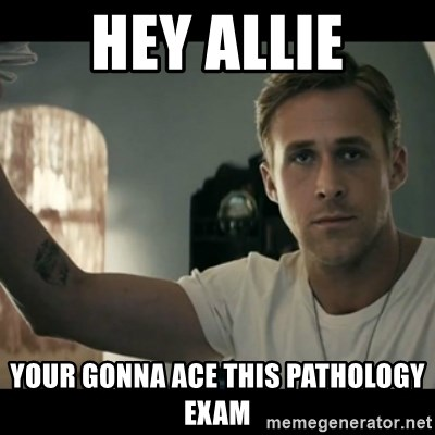 ryan gosling hey girl - hey allie your gonna ace this pathology exam